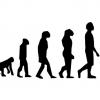 進化論はウソ DNA解析の結果 人を含む90%が20万年前に出現したと判明