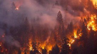 【カリフォルニア大火災】巨大な炎の渦は「火災竜巻」だった?