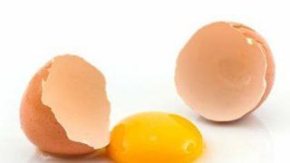 賞味期限切れた生卵を食べた結果www