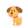 【画像】犬が屋根の上に登っててワロタwwwwwwww