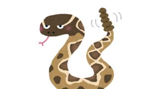 【グロ】ガラガラヘビに咬まれた結果wwwwww