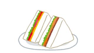 【画像】アメリカのサンドイッチが「腕の筋肉に負担かかりすぎる」と話題に