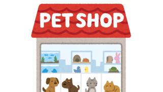 【怒報】ひろゆき「ペットショップでペットを買うやつは人間のクズ。クソ野郎」