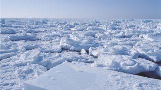 【画像】おばあちゃんが流氷の上でポーズを決めたまま漂流…アイスランド