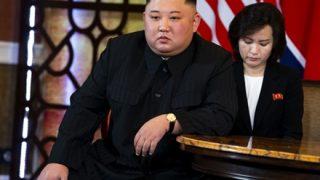 【北朝鮮】金正男氏の息子を救援した団体が「臨時政府」発足を発表。金正恩政権の弾圧に対抗するよう北朝鮮国民に呼びかけ
