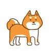 【画像】柴犬さん、強烈な右フックを放つ →