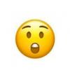 【画像】ホヤの赤ちゃんが😯みたいな顔でかわいいw