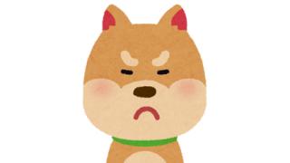 【犬好き閲覧注意】ペットショップで犬が溺死 飼い主がその光景をスマホで撮影しSNSに動画投稿 →
