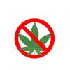 【悲報】ツイカスさん『大麻』と騙され『お茶漬けの素』を掴まされてSOSを発信