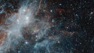 【速報】宇宙は何者かの脳の中だと言うことが判明してしまう →画像
