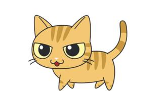 【動画像】世界一『小さい猫』が可愛すぎるんやが٩(ˊᗜˋ*)و