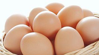 【画像】ツイッター民「卵を割ったら中から鳥が出てきて草」