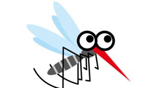 【閲覧注意】ワイの飼ってる蚊、無事全員が羽化wwwwwwwwwwwwwww