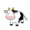 【🐮】牛の体に穴 胃に手を入れる『丸窓』保護団体が映像公開し非難 ※画像アリ※