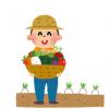 農家「大根の形悪いなぁ・・・せや!」 →