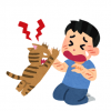 【悲報】病院で大暴れした猫さん、ガチガチに拘束される →画像