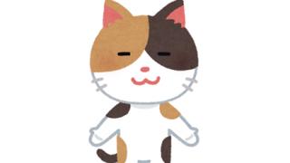 【速報】マッチョ猫、発見される