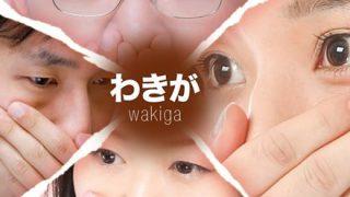 【閲覧注意】ワキガの原因であるアポクリン腺の画像wwwwww