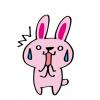 【遺伝子変異】毛のないウサギが人気者に →動画像