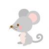 【トラップ動画】海外の家ってネズミこんなに居るのかよwwwww