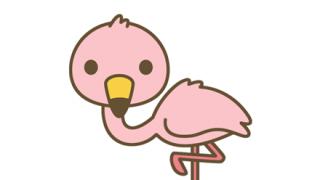 【かわヨ】フラミンゴの赤ちゃん、片足立ちの練習をする →GIfと動画