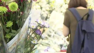 【間違えました】フジTV、京アニ事件で死亡の監督に「アホ」テロップ 謝罪コメント発表へ
