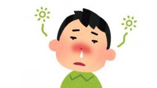 【体験報告】蓄膿の手術をした結果