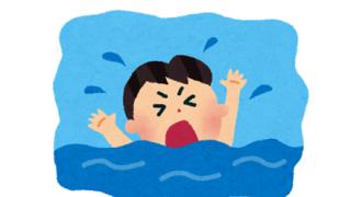 イッヌ「ご主人様が溺れてる…!?助けなきゃ(使命感」→