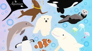【画像】タコブネ捕まえたから水族館に寄贈してきたwwwwww