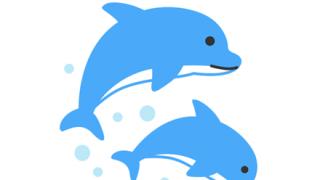【かわヨ】イルカさん、勝手にショーを始めてしまう →動画