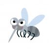 【悲報】遺伝子操作による『蚊の減少実験』に失敗『不死身の蚊』が誕生