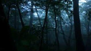 昔、友達に聞いた九州のとある村、森の怖い話を語りたい