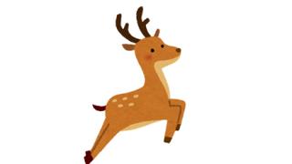 【画像】明らかに合成っぽい目をした鹿が見つかるwwwww