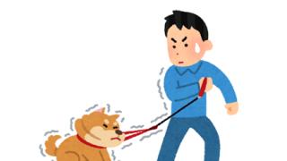 【これ虐待?】散歩中に犬を強引に引きずる飼い主の動画が拡散