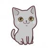 【動画】飼い猫に「お手」を教えてみた結果 →