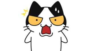 【画像】顔面が チ ン ポ みたいな猫が発見される
