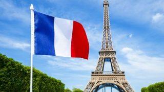 【画像】フランスの犬、イケメンすぎるwwwww