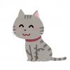 【感動】監視カメラが捉えた『赤ちゃんを守った猫』が話題に →動画