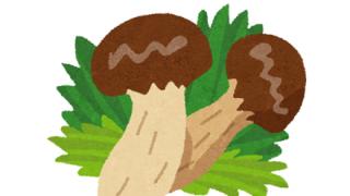 【閲覧注意】松茸を切ったら虫さんパクパクしてて草 →画像