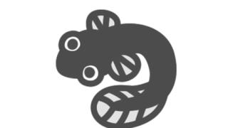 【画像】新種のウナギが気持ち悪すぎる・・・
