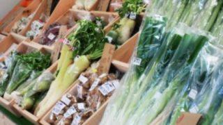 【画像】中国産の野菜を育ててる水wwwwww