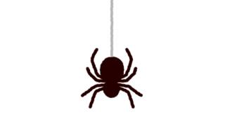 【新種悲報】メキシコで発見された毒グモがヤバいwwwwww