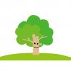 【画像】この木が謎らしい・・・