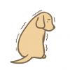 【動画有】犬虐待動画がネットで拡散「覚えてないが躾と思う。申し訳ないことをした」