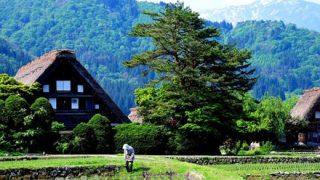 【1人旅】日本の原風景の写真