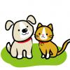 【画像】イヌを初めてみたネコの反応wwwwww
