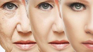◆不老不死にチェックメイト?◆114歳の細胞を万能細胞化→赤ちゃんレベルまでテロメアが回復