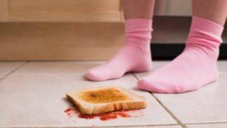 寄生虫博士「子供には落ちたものを食べさせなさい」