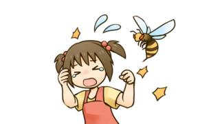 【動画像】世 界 最 大 の ハ チ が こ ち ら →