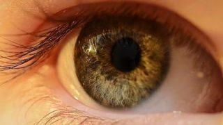 ◆グロ注意◆目の癌がヤバすぎる・・・